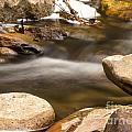 Oak Creek 2 by Larry White
