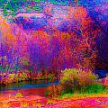 Oak Creek Acid 2 by Kent Nancollas