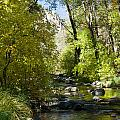 Oak Creek Canyon Creek Arizona by Douglas Barnett