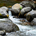 Oak Creek Water And Rocks by Michael Moriarty
