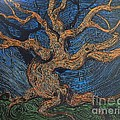 Oak In The Weave by Stefan Duncan