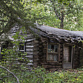 Oak Lodge by Guy Shultz