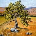 Oak Tree by Darice Machel McGuire