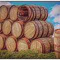 Oak Wine Barrels by LeeAnn McLaneGoetz McLaneGoetzStudioLLCcom