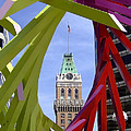 Oakland Tribune by Donna Blackhall