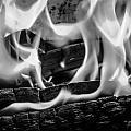 Oakwood Flames by Mair Hunt