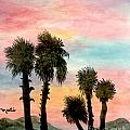 Oasis by Flamingo Graphix John Ellis
