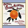 Oatmans Sunny Mountain Brand Oranges Vertical by Elaine Plesser