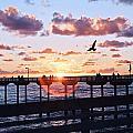 Ob Pier  by Gigi Ebert