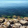 Ocean And Rocks by Carlos Caetano