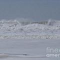 Ocean Curl by Jacklyn Duryea Fraizer