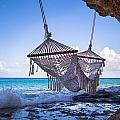 Ocean Front Hammock by Ferry Zievinger