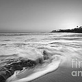 Ocean Glow Bw by Michael Ver Sprill