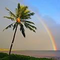 Ocean Rainbow Maui by Charles Owens