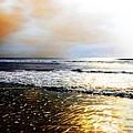 Ocean by Savannah Gibbs