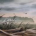 Ocean Shore by James Williamson