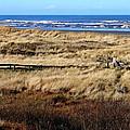 Ocean Shores Boardwalk by Jeanette C Landstrom