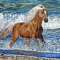 Ocean Stallion by Danielle  Perry