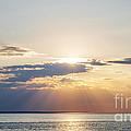 Ocean Sunset by Elena Elisseeva