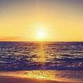 Ocean Sunset by Florian Rodarte