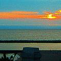 Ocean Sunset With Birds by Ben and Raisa Gertsberg