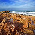Ocean View by Bruce Bain
