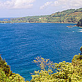 Ocean View From The Road To Hana, Maui by Panoramic Images
