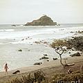 Ocean Walk by Jackie Farnsworth