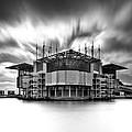 Oceanarium by Jorge Maia