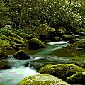 Oconaluftee River by Frank Tozier