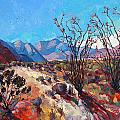 Ocotillo Color by Erin Hanson