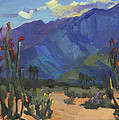 Ocotillos At Smoke Tree Ranch by Diane McClary