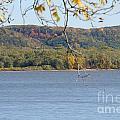 October Bluffs by Susan Herber