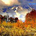 October In Grand Tetons by Irina Hays