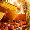 October Market by Jim Garrison