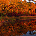 October Mirror by Dianne Cowen