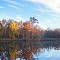 October Pond View by Marcel  J Goetz  Sr