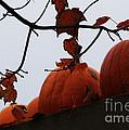 October's Garden Wall by Linda Shafer