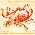 Octopus For Study by William Depaula