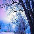 Of Dreams And Winter by Tara Turner
