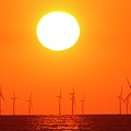 Offshore Wind Turbines At Sunset by David Woodfall Images/science Photo Library