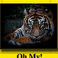 Oh My by Robert L Jackson