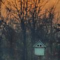 Ohio Bird House At Sunset by Martin Belan
