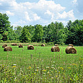 Ohio Countryside by Cortney Price