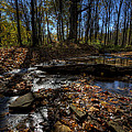 Ohio Fall Beauty Scene by David Dufresne