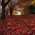 Ohio Fall Scenery by David Dufresne