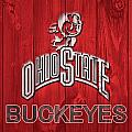 Ohio State Buckeyes Barn Door by Dan Sproul