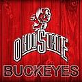 Ohio State Buckeyes Barn Door Vignette by Dan Sproul