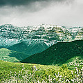Ojai Mountain Snow by David Millenheft