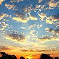 Okavango Delta Sunset by Amanda Stadther